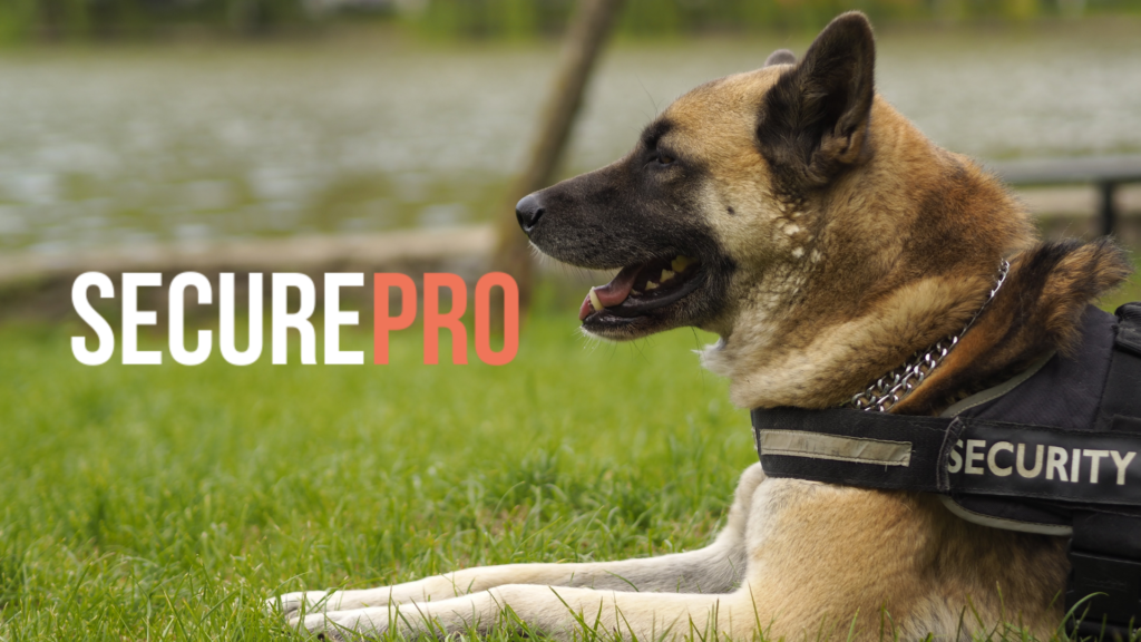 Dog-Handling SecurePro